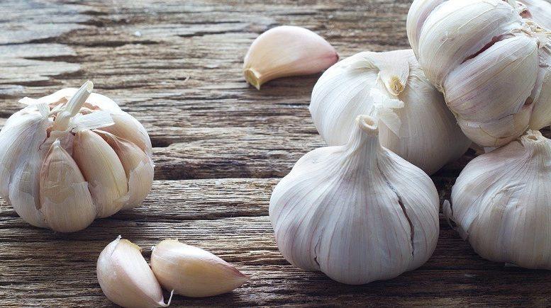 Garlic (Σκόρδο)