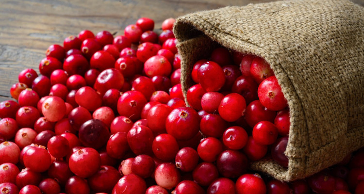 Cranberry (Κράνμπερι)