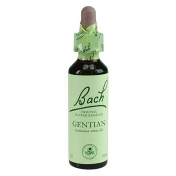 Power Health Bach Gentian 20ml