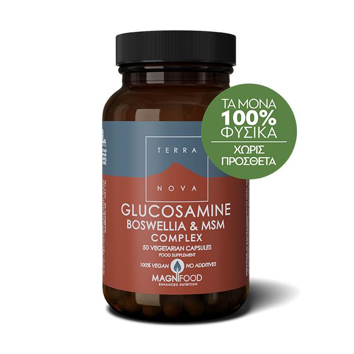 TerraNova Glucosamine Boswellia & MSM Complex 50 caps