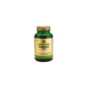 Solgar SFP Echinacea Herb Extract 60 Vegetable Capsules